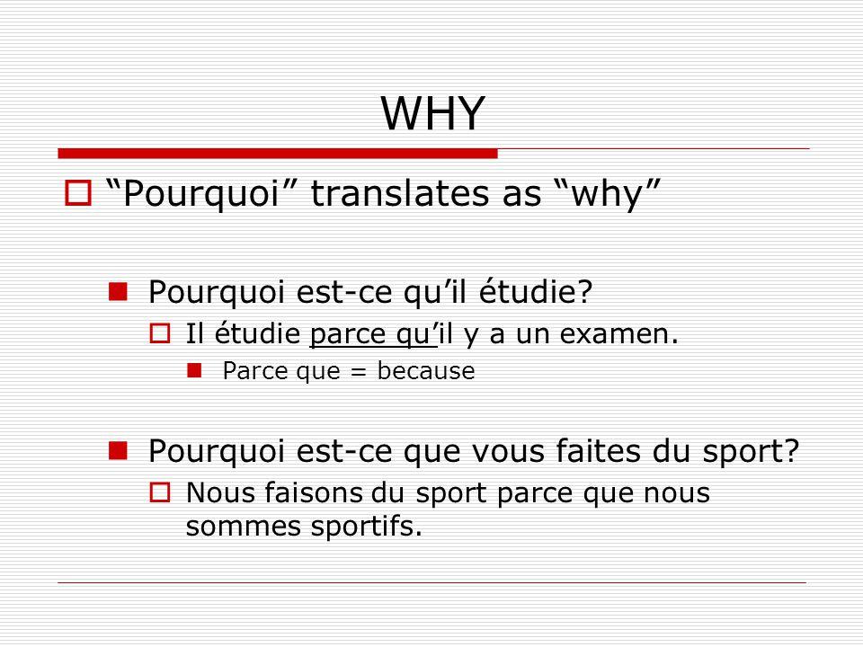 WHY Pourquoi translates as why Pourquoi est-ce qu'il étudie