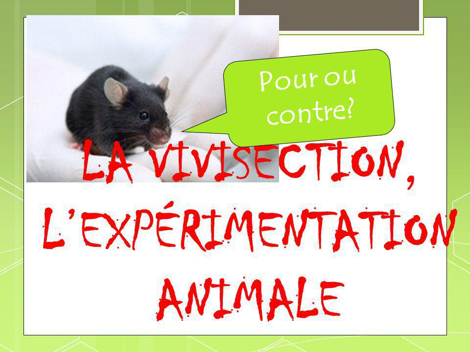 LA VIVISECTION, L'EXPÉRIMENTATION ANIMALE