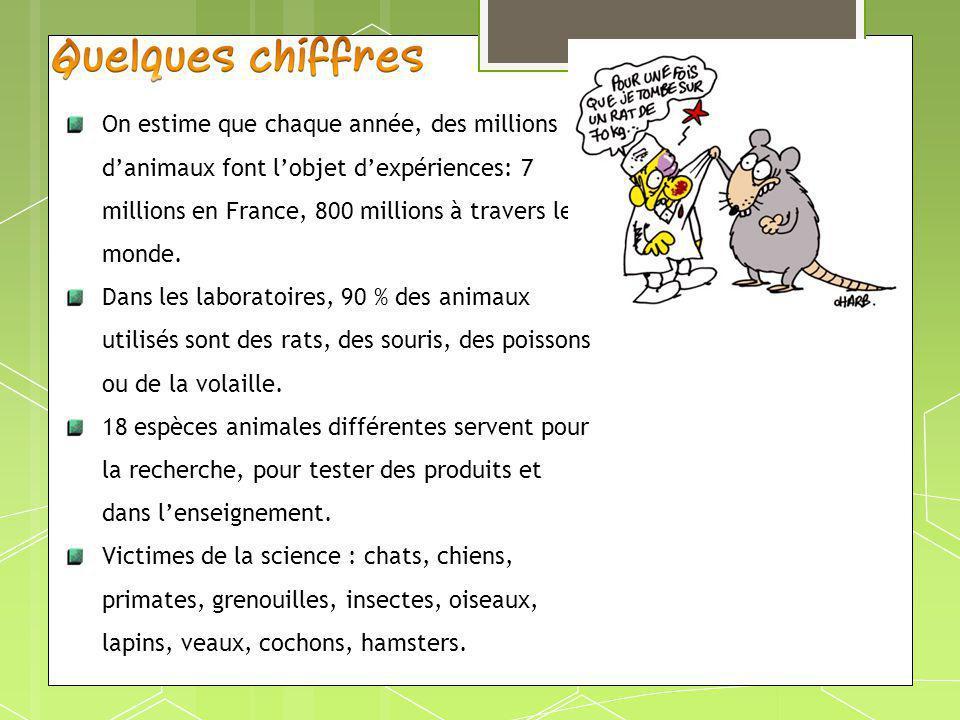 On estime que chaque année, des millions d'animaux font l'objet d'expériences: 7 millions en France, 800 millions à travers le monde.
