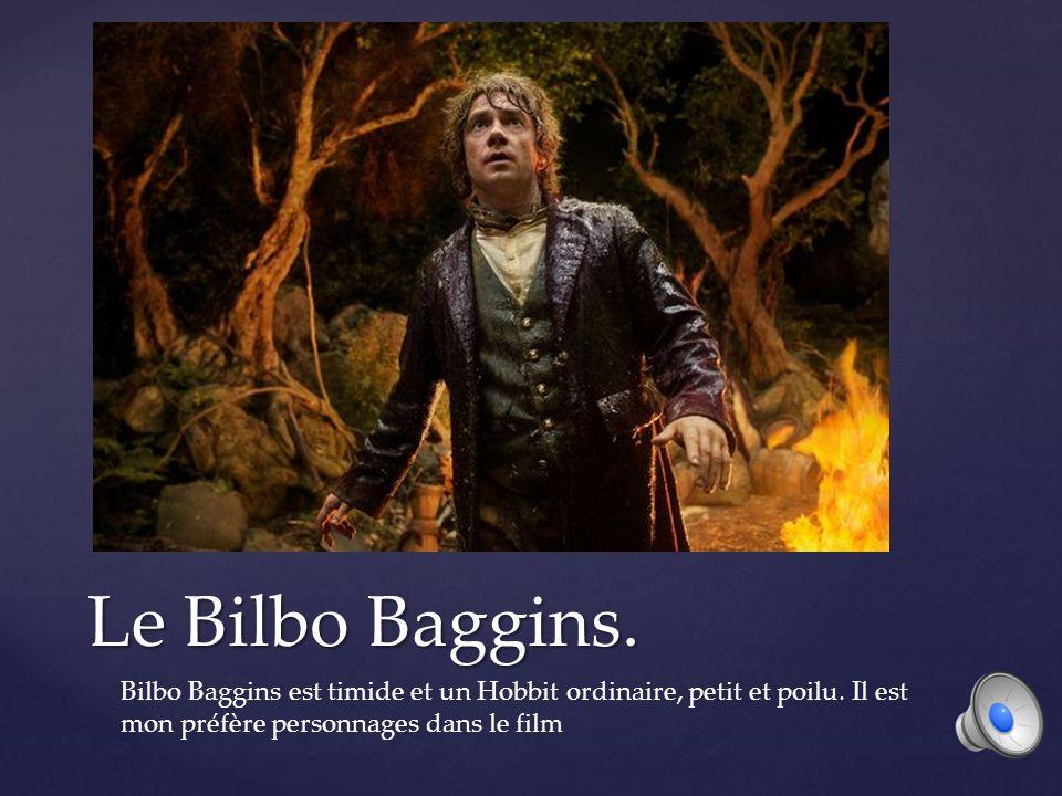 Le Bilbo Baggins. Bilbo Baggins est timide et un Hobbit ordinaire, petit et poilu.