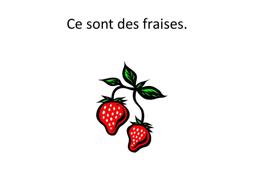 Ce sont des fraises.