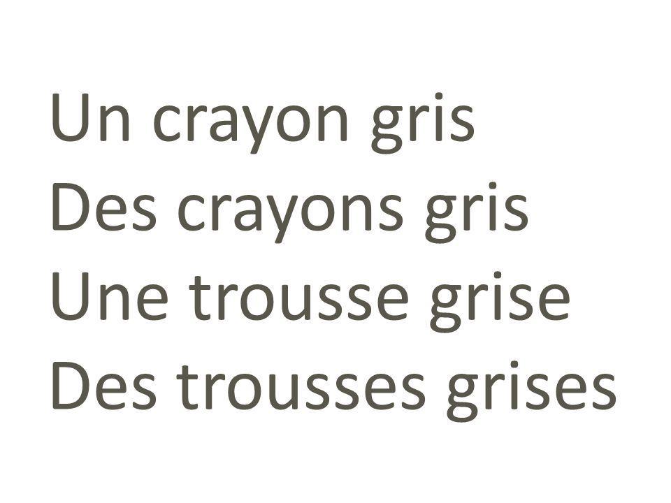 Un crayon gris Des crayons gris Une trousse grise Des trousses grises