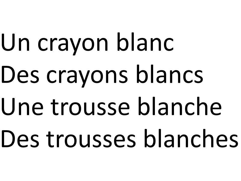 Un crayon blanc Des crayons blancs Une trousse blanche Des trousses blanches
