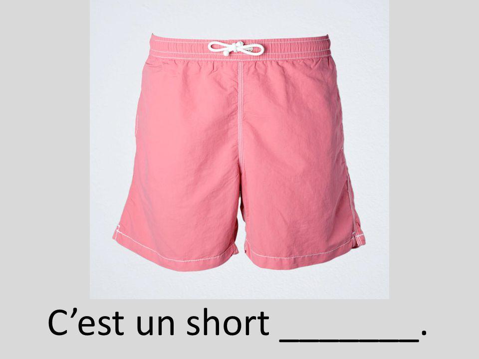 C'est un short _______.