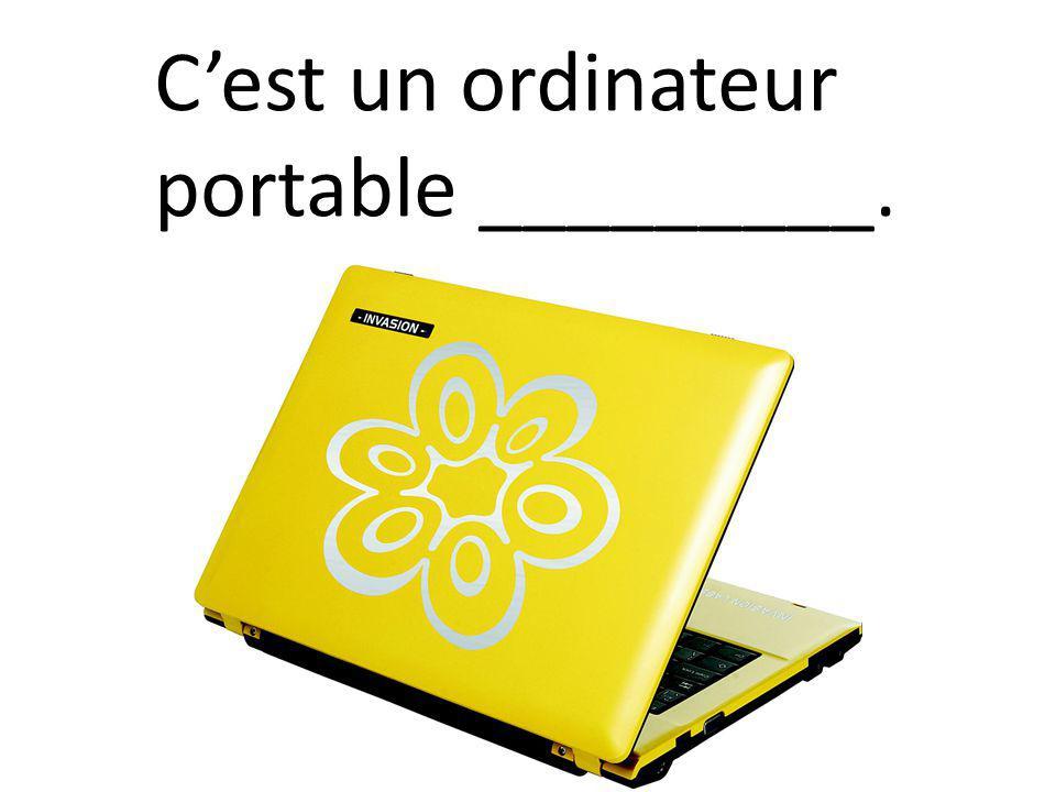 C'est un ordinateur portable _________.