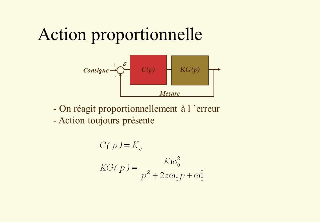 Action proportionnelle
