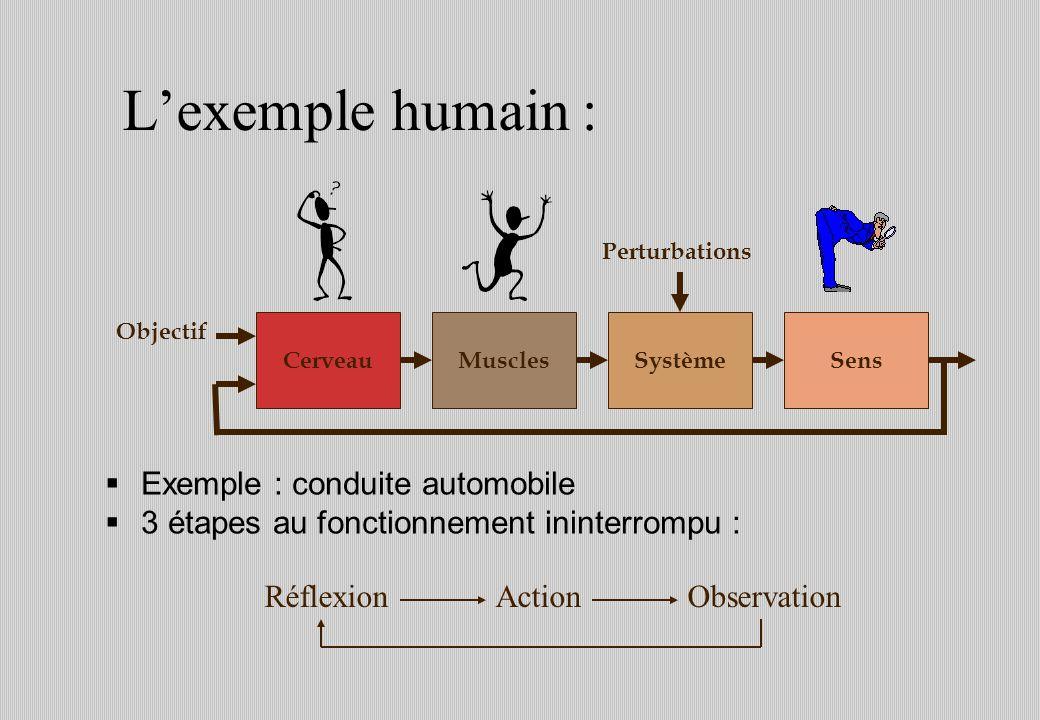 L'exemple humain : Exemple : conduite automobile