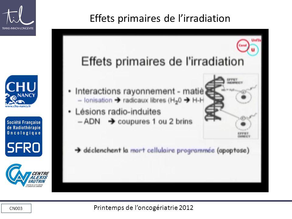 Effets primaires de l'irradiation