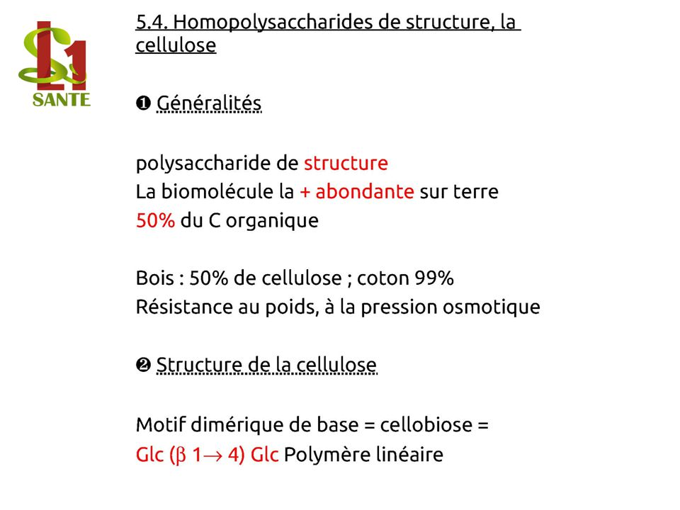 5.4. Homopolysaccharides de structure, la cellulose