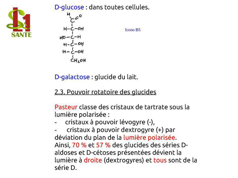 D-glucose : dans toutes cellules. D-galactose : glucide du lait.