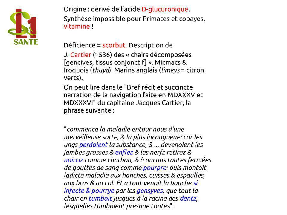 Origine : dérivé de l'acide D-glucuronique.
