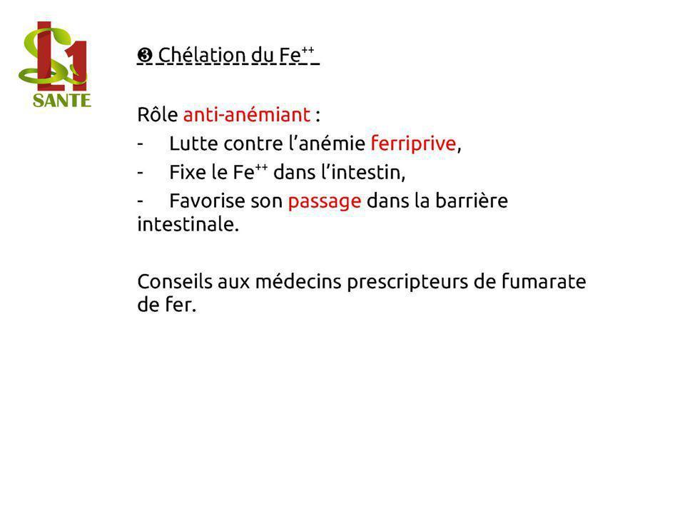 ❸ Chélation du Fe ++