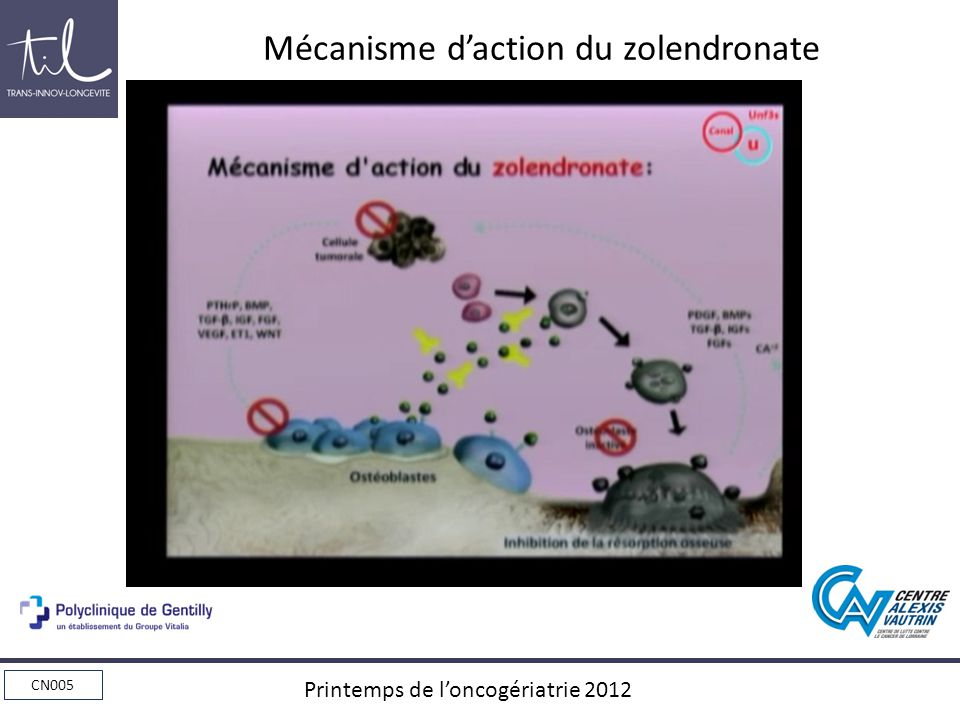 Mécanisme d'action du zolendronate