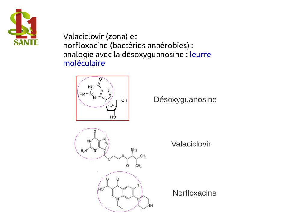 Valaciclovir (zona) et norfloxacine (bactéries anaérobies) : analogie avec la désoxyguanosine : leurre moléculaire