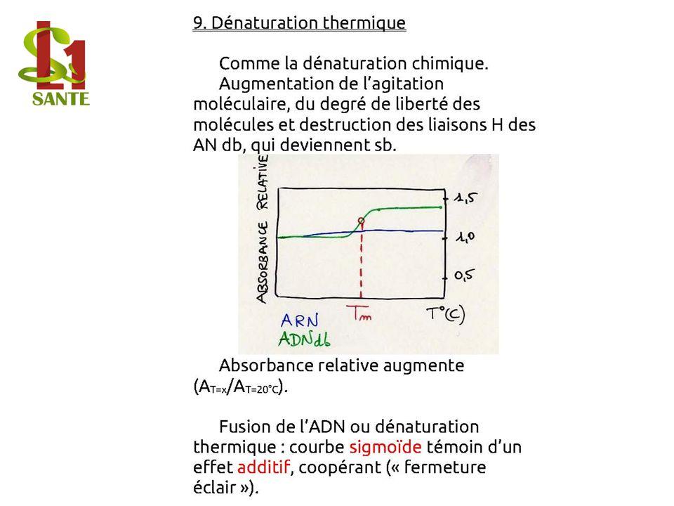 9. Dénaturation thermique