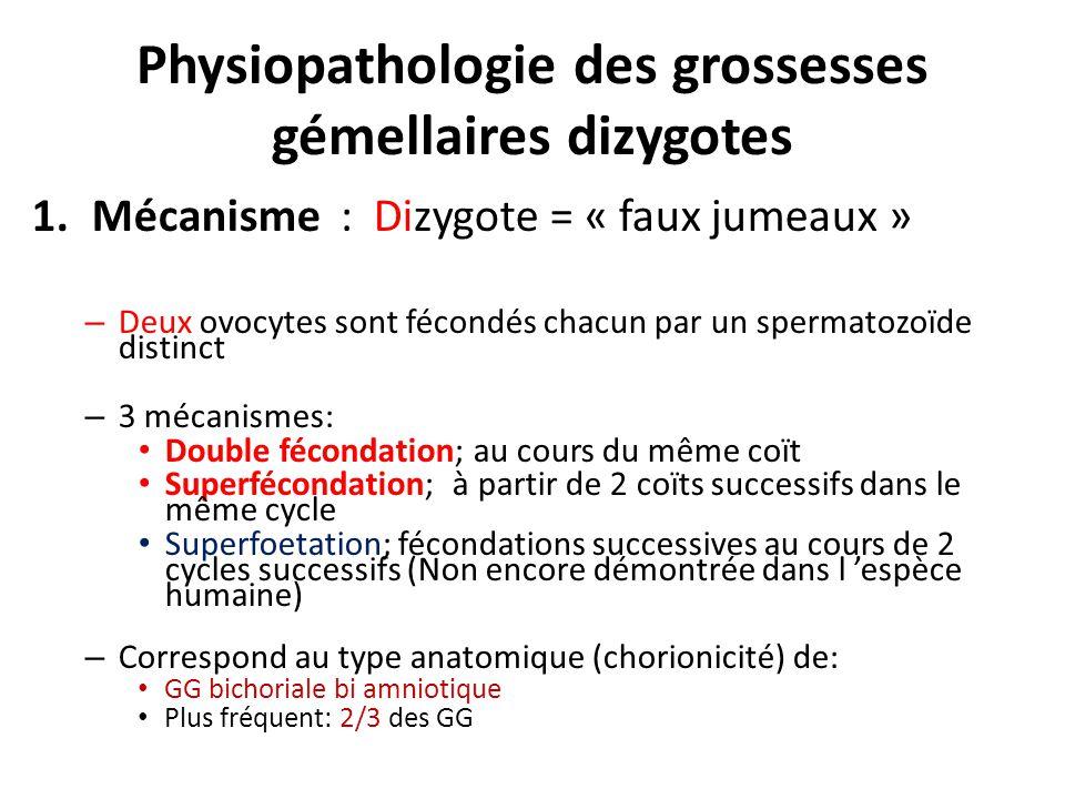 Physiopathologie des grossesses gémellaires dizygotes