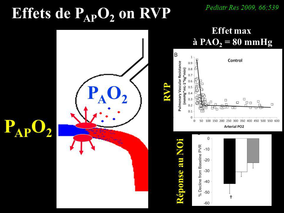 PAO2 PAPO2 Effets de PAPO2 on RVP Effet max à PAO2 = 80 mmHg RVP
