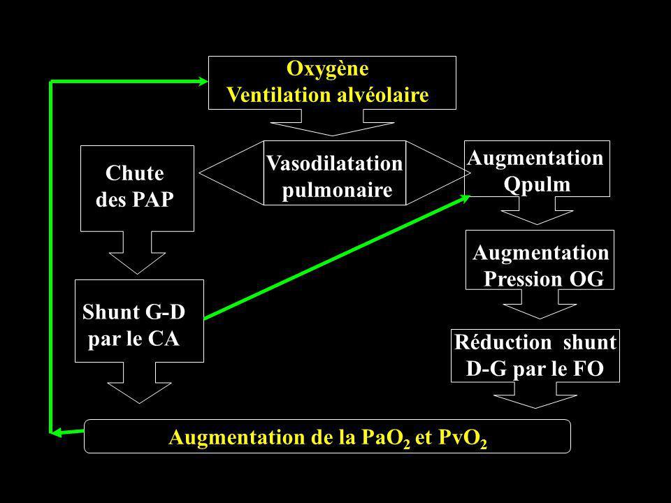 Ventilation alvéolaire Augmentation de la PaO2 et PvO2