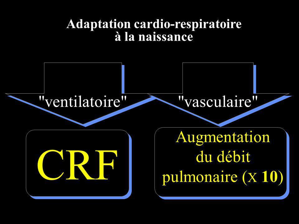 Adaptation cardio-respiratoire à la naissance