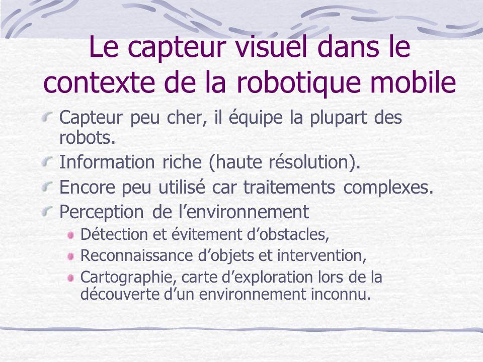 Le capteur visuel dans le contexte de la robotique mobile