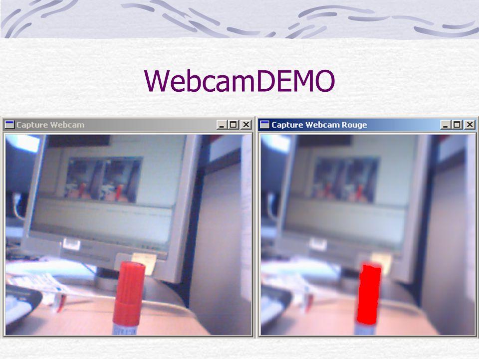 WebcamDEMO