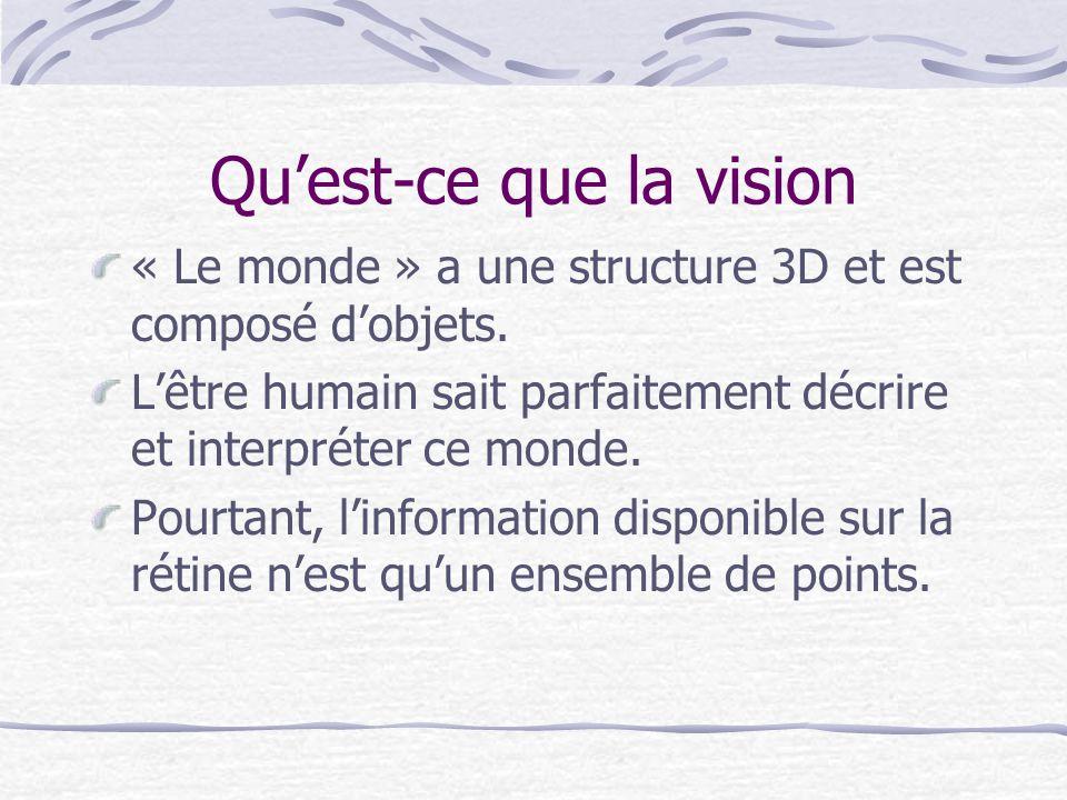 Qu'est-ce que la vision