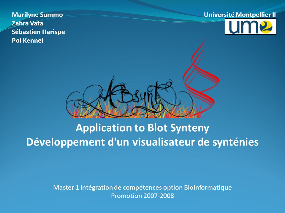 Application to Blot Synteny