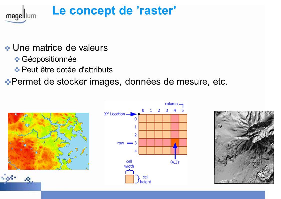 Le concept de 'raster Une matrice de valeurs