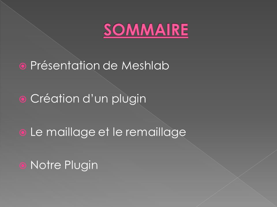 SOMMAIRE Présentation de Meshlab Création d'un plugin