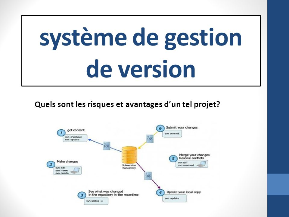 système de gestion de version