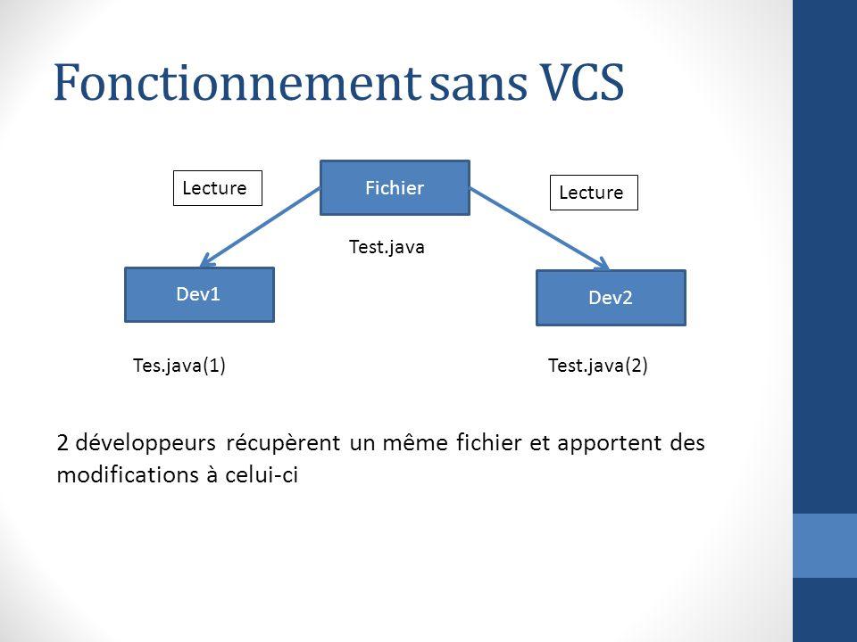 Fonctionnement sans VCS
