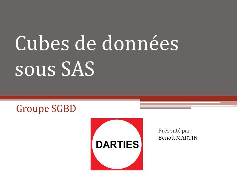 Cubes de données sous SAS