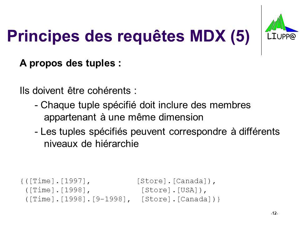 Principes des requêtes MDX (5)