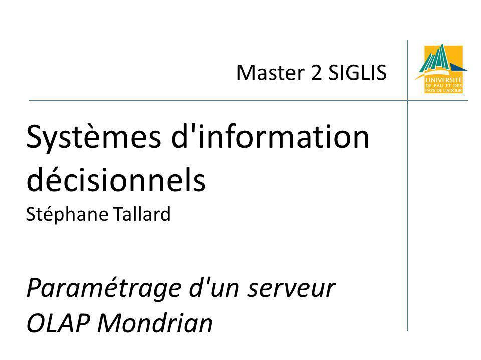 Systèmes d information décisionnels