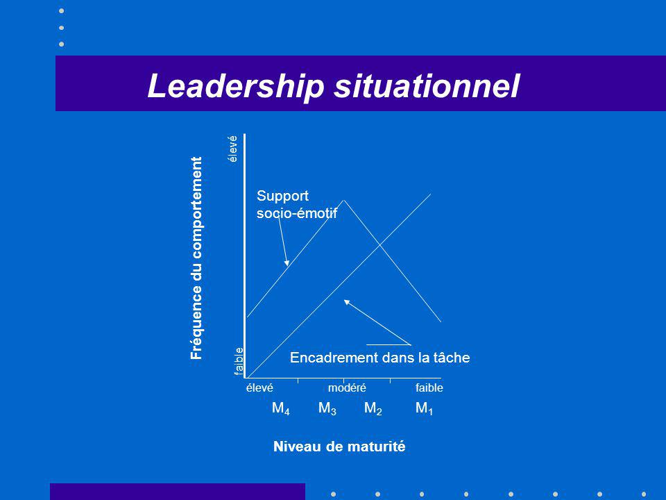 Leadership situationnel