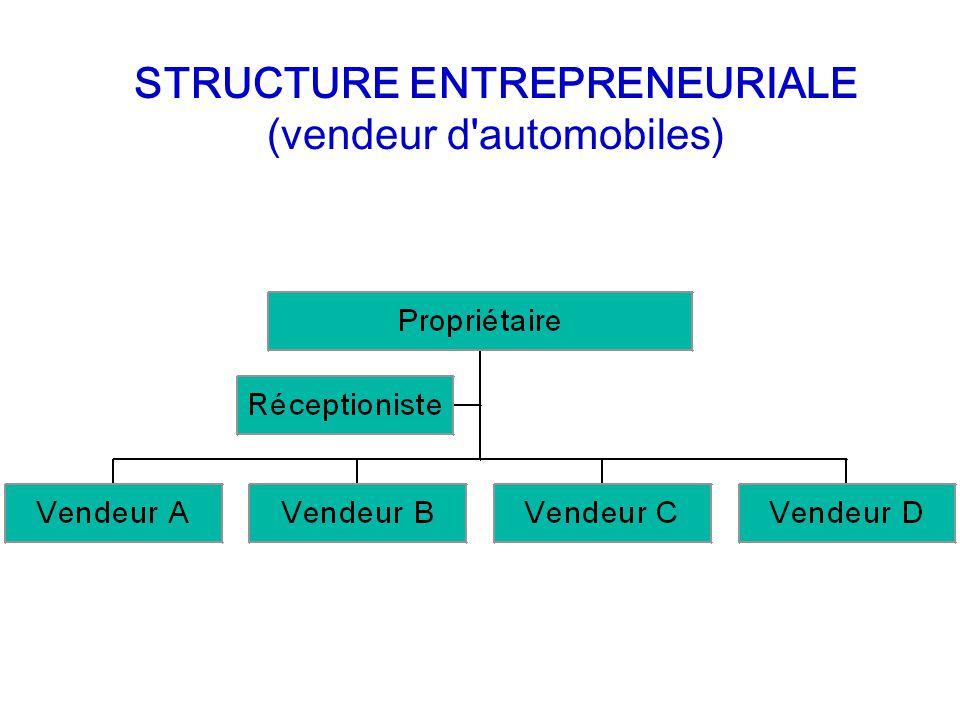 STRUCTURE ENTREPRENEURIALE (vendeur d automobiles)