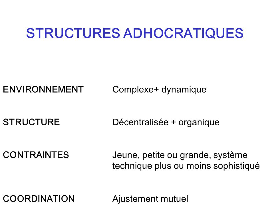 STRUCTURES ADHOCRATIQUES