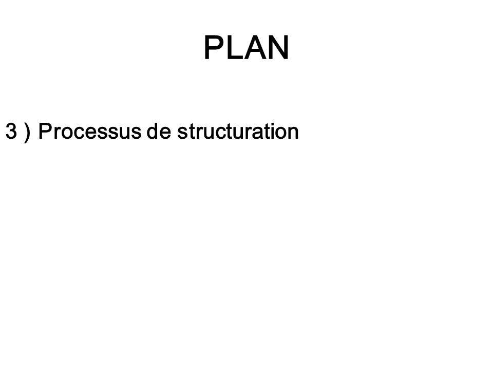 PLAN 3 ) Processus de structuration