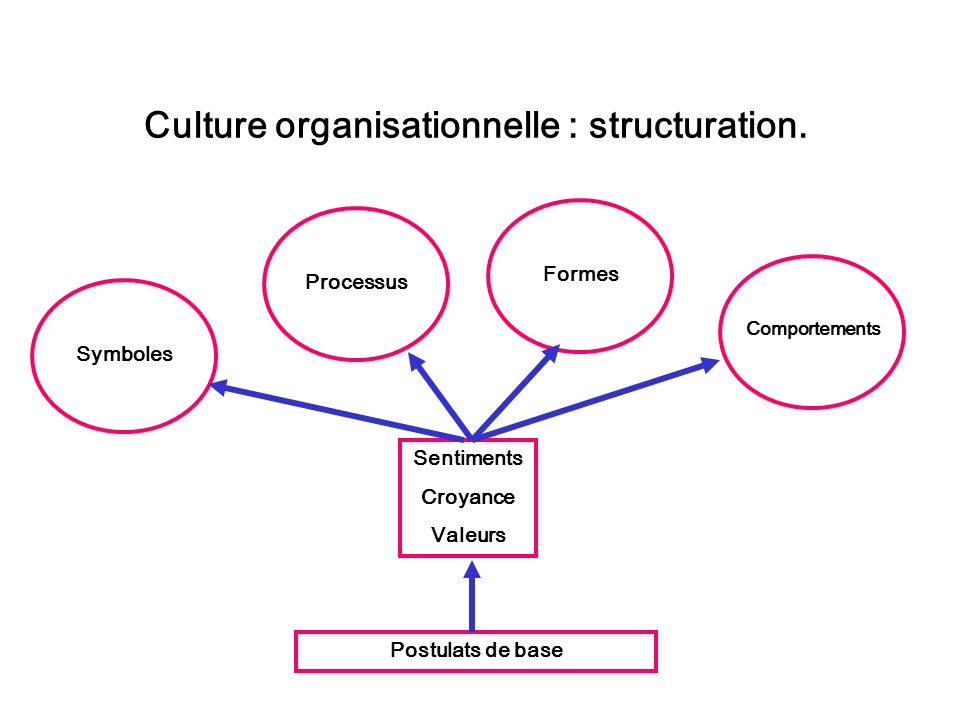 Culture organisationnelle : structuration.