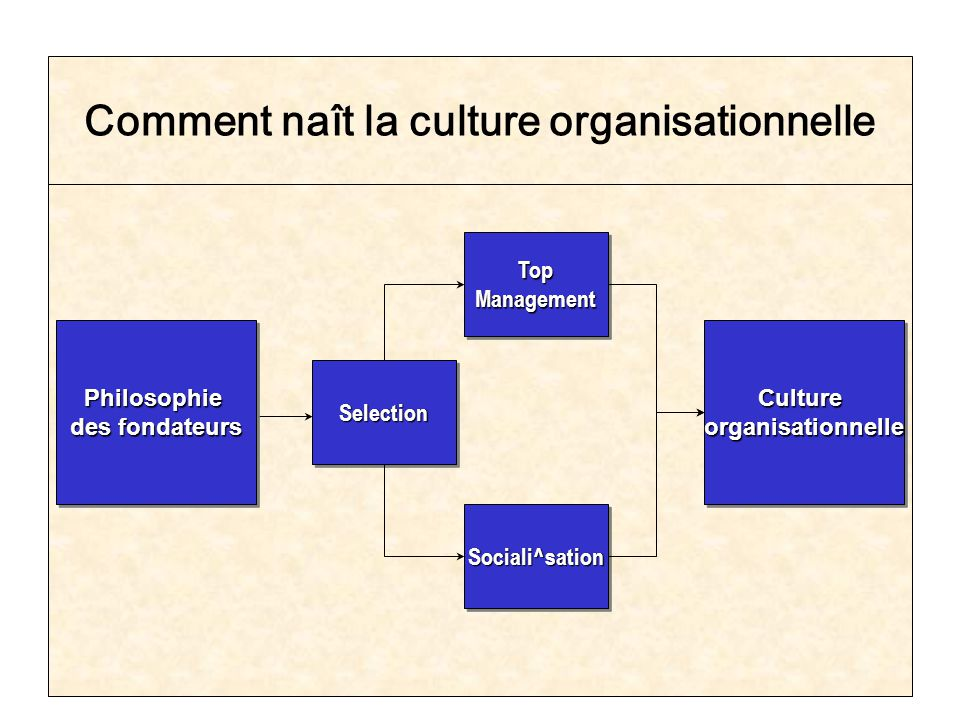 Comment naît la culture organisationnelle