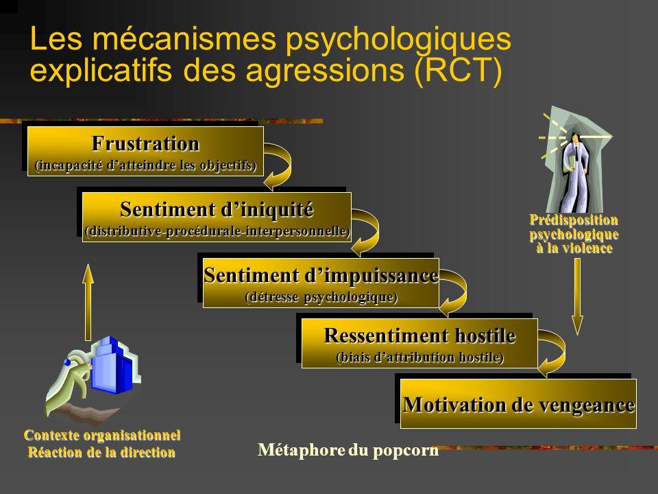 Les mécanismes psychologiques explicatifs des agressions (RCT)