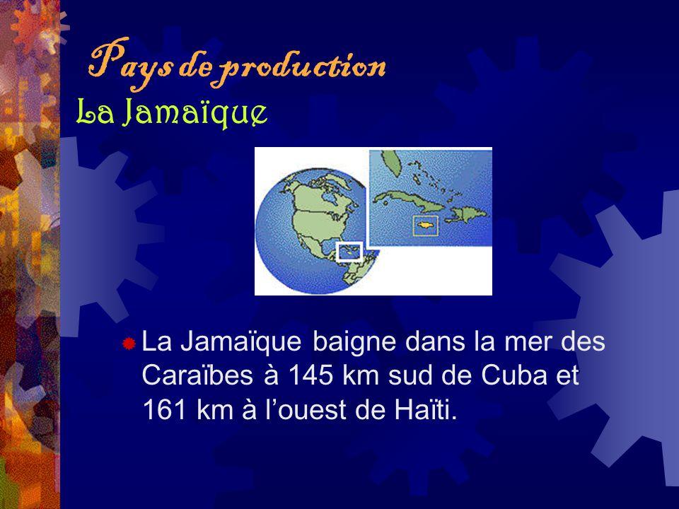 Pays de production La Jamaïque