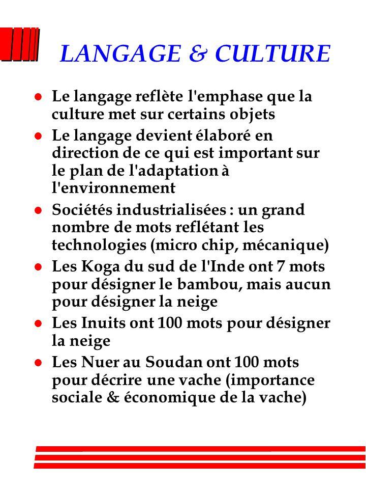 LANGAGE & CULTURE Le langage reflète l emphase que la culture met sur certains objets.