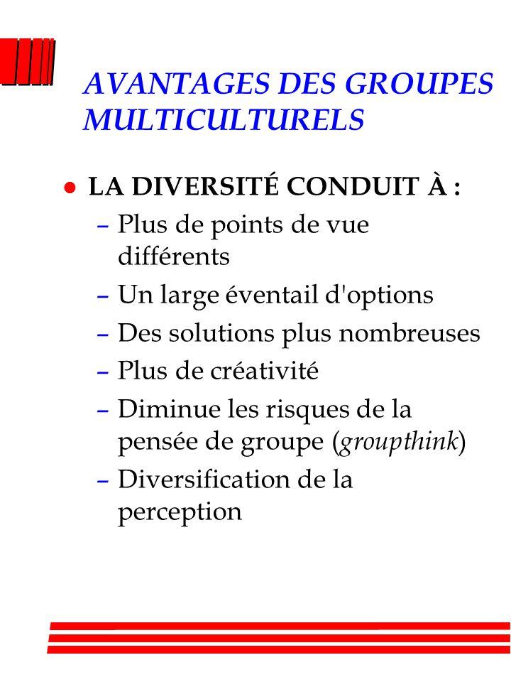 AVANTAGES DES GROUPES MULTICULTURELS