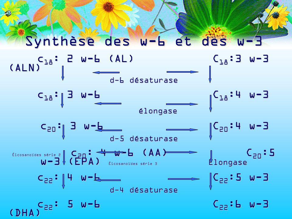 Synthèse des w-6 et des w-3