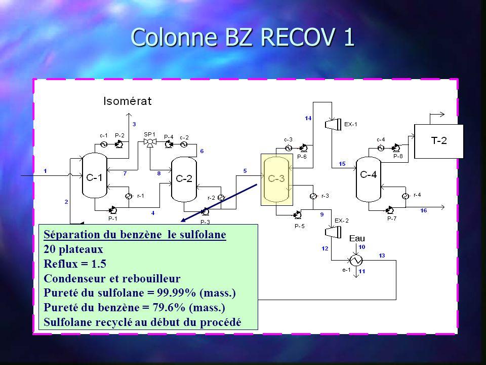 Colonne BZ RECOV 1 Séparation du benzène le sulfolane 20 plateaux