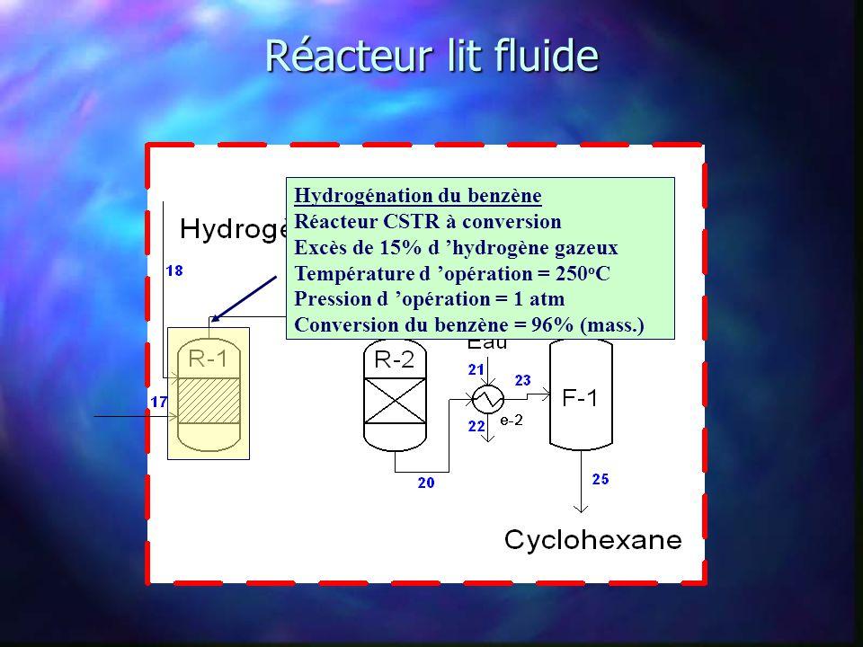 Réacteur lit fluide Hydrogénation du benzène