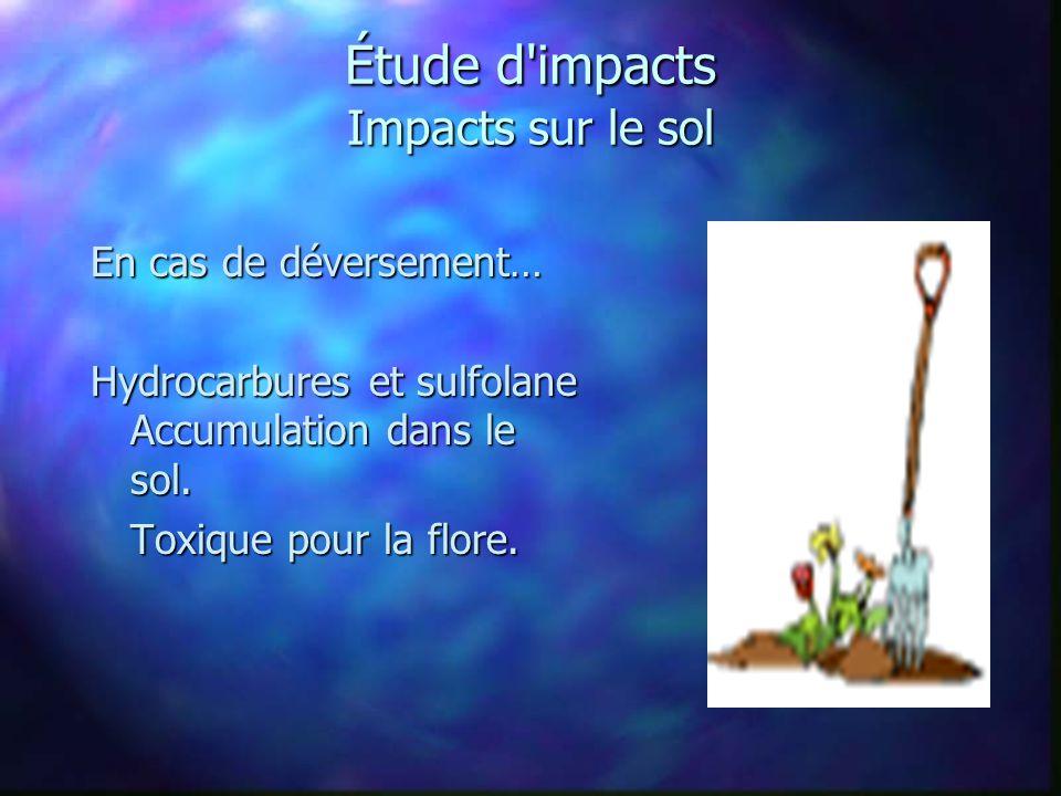 Étude d impacts Impacts sur le sol