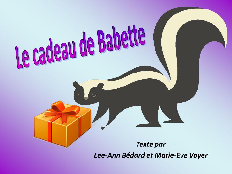 Texte par Lee-Ann Bédard et Marie-Eve Voyer
