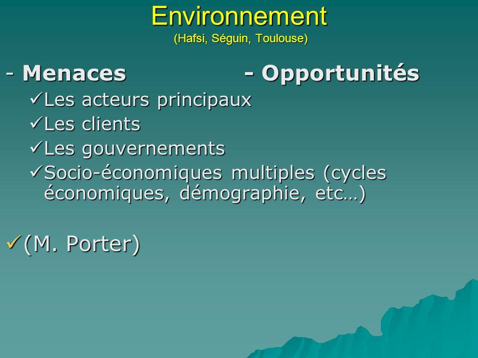 Environnement (Hafsi, Séguin, Toulouse)